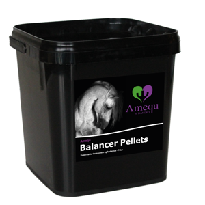Dangro Amequ Balancer Pellets