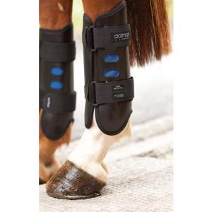 Dalmar Eventer back boot