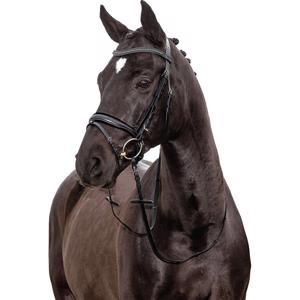 Horse Guard Avan Bridle