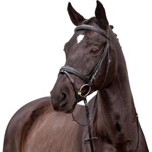 Horse Guard Ayal Bridle